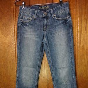American Eagle Womens Denim Jeans Slim Boot Cut